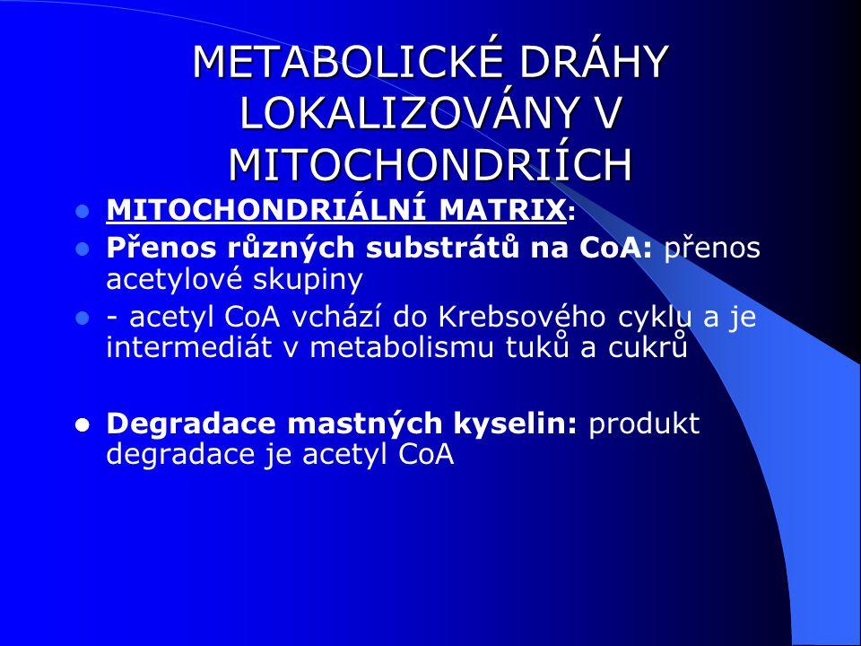 METABOLICKÉ DRÁHY LOKALIZOVÁNY V MITOCHONDRIÍCH MITOCHONDRIÁLNÍ MATRIX : Přenos různých substrátů na CoA: přenos acetylové skupiny - acetyl CoA vchází do Krebsového cyklu a je intermediát v metabolismu tuků a cukrů Degradace mastných kyselin: produkt degradace je acetyl CoA