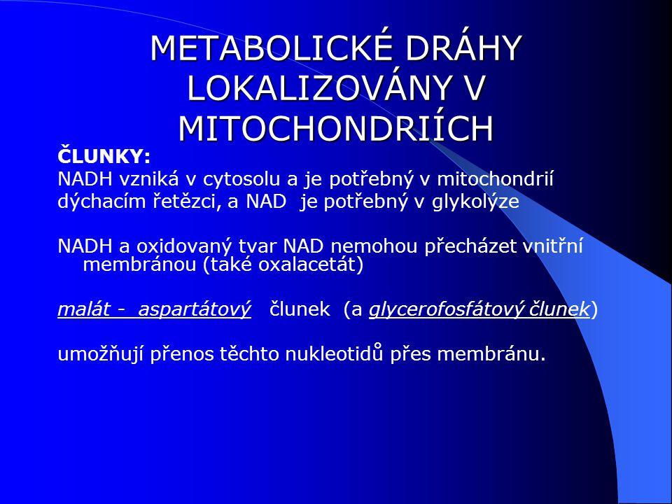 ČLUNKY: NADH vzniká v cytosolu a je potřebný v mitochondrií dýchacím řetězci, a NAD je potřebný v glykolýze NADH a oxidovaný tvar NAD nemohou přecházet vnitřní membránou (také oxalacetát) malát - aspartátový člunek (a glycerofosfátový člunek) umožňují přenos těchto nukleotidů přes membránu.