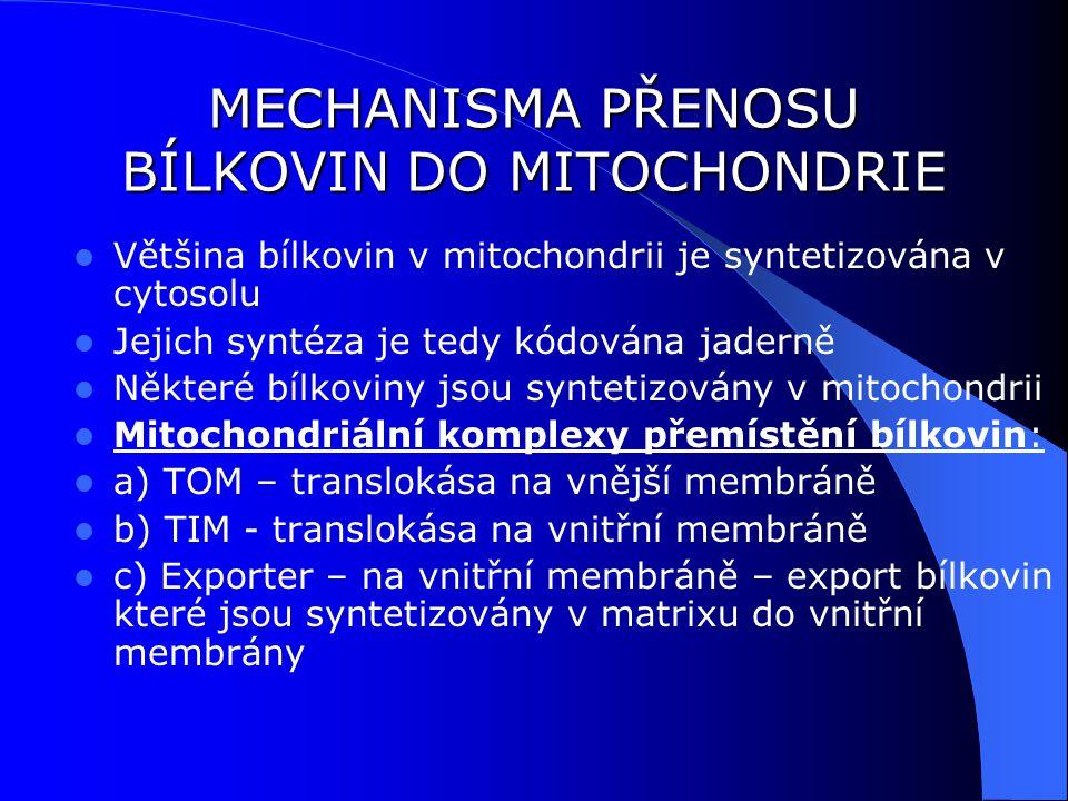 MECHANISMA PŘENOSU BÍLKOVIN DO MITOCHONDRIE Většina bílkovin v mitochondrii je syntetizována v cytosolu Jejich syntéza je tedy kódována jaderně Některé bílkoviny jsou syntetizovány v mitochondrii Mitochondriální komplexy přemístění bílkovin: a) TOM – translokása na vnější membráně b) TIM - translokása na vnitřní membráně c) Exporter – na vnitřní membráně – export bílkovin které jsou syntetizovány v matrixu do vnitřní membrány