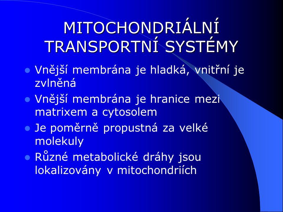 MITOCHONDRIÁLNÍ TRANSPORTNÍ SYSTÉMY Vnější membrána je hladká, vnitřní je zvlněná Vnější membrána je hranice mezi matrixem a cytosolem Je poměrně propustná za velké molekuly Různé metabolické dráhy jsou lokalizovány v mitochondriích