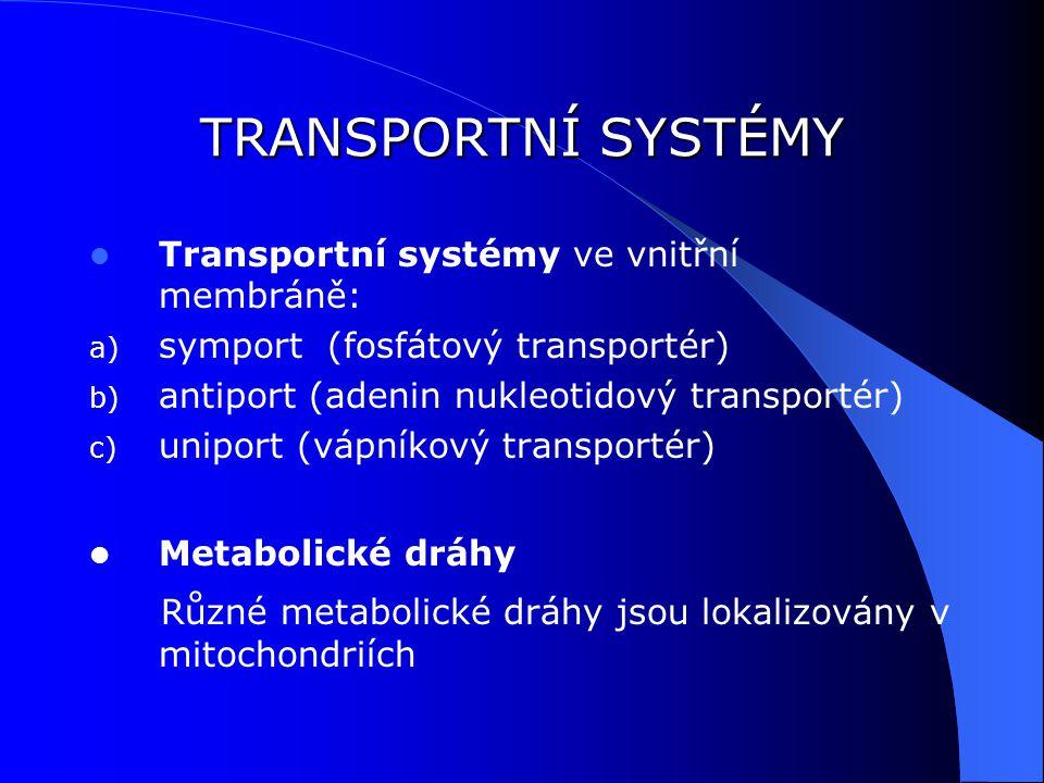 TRANSPORTNÍ SYSTÉMY Transportní systémy ve vnitřní membráně: a) symport (fosfátový transportér) b) antiport (adenin nukleotidový transportér) c) uniport (vápníkový transportér) Metabolické dráhy Různé metabolické dráhy jsou lokalizovány v mitochondriích
