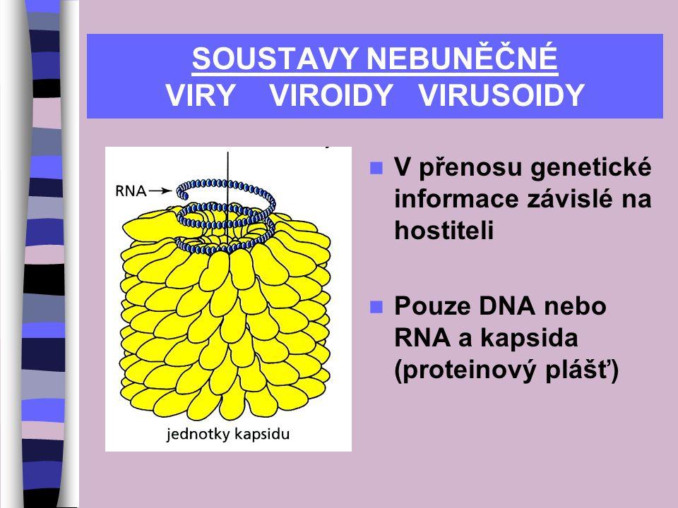 SOUSTAVY NEBUNĚČNÉ VIRY VIROIDY VIRUSOIDY V přenosu genetické informace závislé na hostiteli Pouze DNA nebo RNA a kapsida (proteinový plášť)