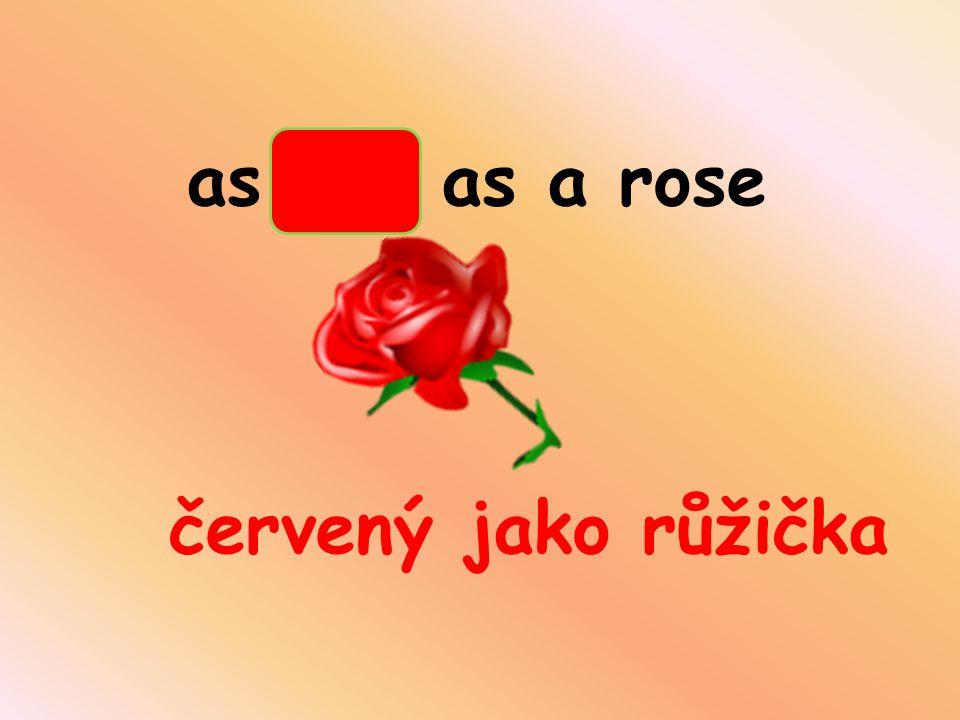 as red as a rose červený jako růžička