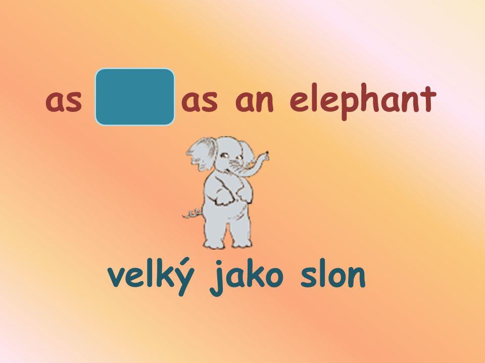 as big as an elephant velký jako slon