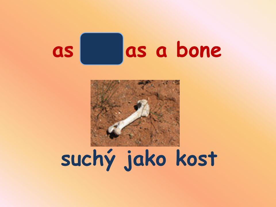 as dry as a bone suchý jako kost