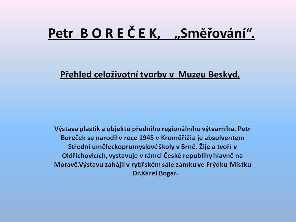 """Petr B O R E Č E K, """"Směřování .Přehled celoživotní tvorby v Muzeu Beskyd."""
