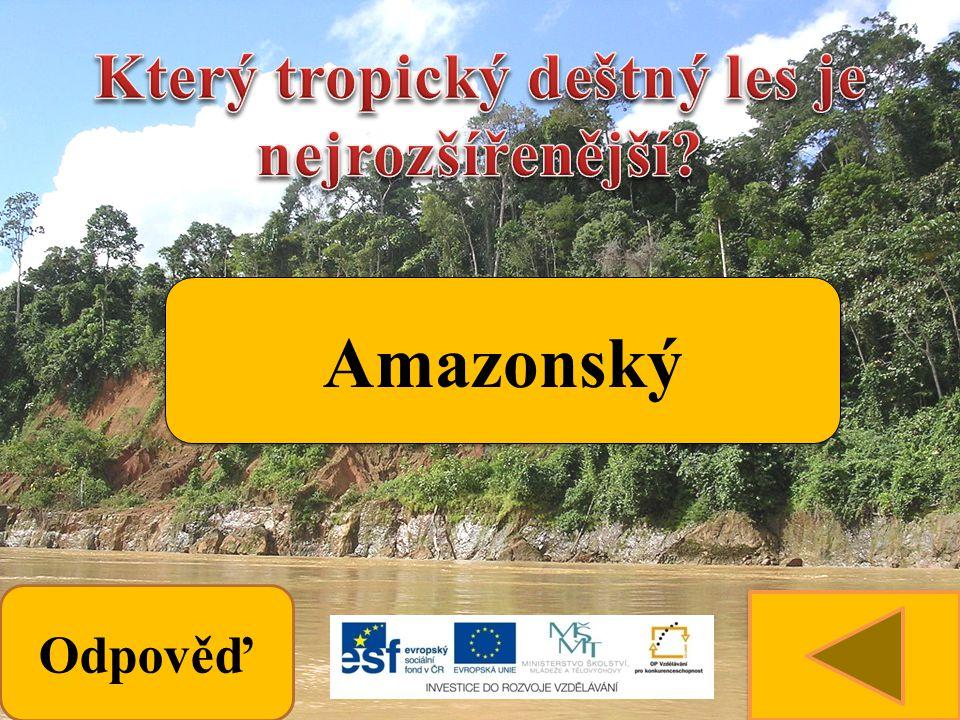 Odpověď Amazonský