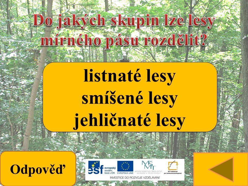 Odpověď listnaté lesy smíšené lesy jehličnaté lesy listnaté lesy smíšené lesy jehličnaté lesy