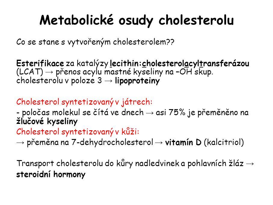 Metabolické osudy cholesterolu Co se stane s vytvořeným cholesterolem?.