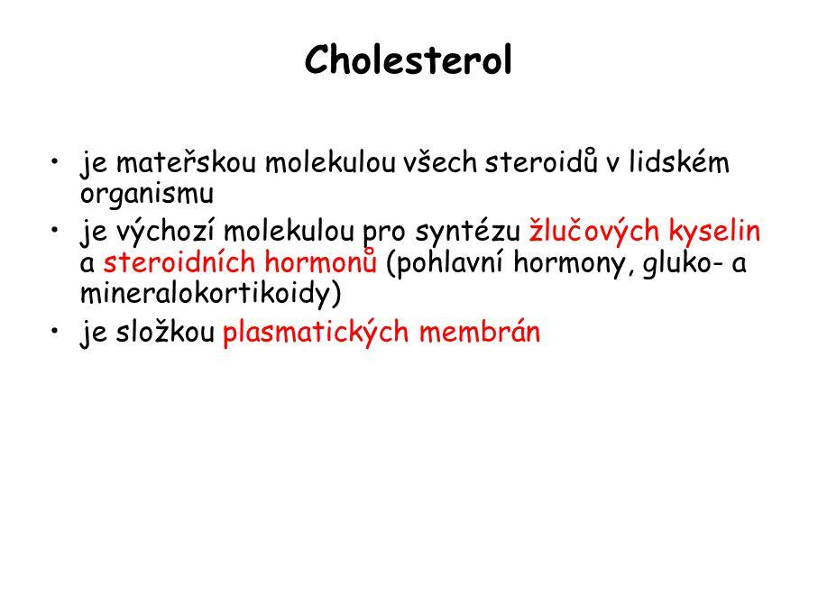 Struktura cholesterolu Obrázky byly převzaty z knihy T.