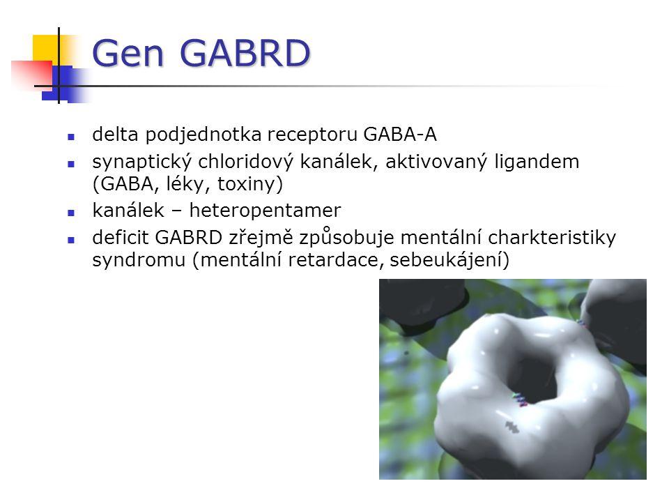 Gen GABRD delta podjednotka receptoru GABA-A synaptický chloridový kanálek, aktivovaný ligandem (GABA, léky, toxiny) kanálek – heteropentamer deficit