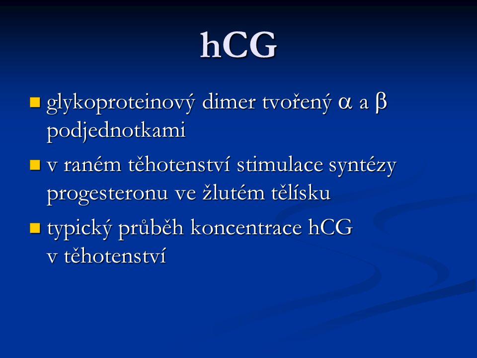 hCG glykoproteinový dimer tvořený  a  podjednotkami glykoproteinový dimer tvořený  a  podjednotkami v raném těhotenství stimulace syntézy progeste