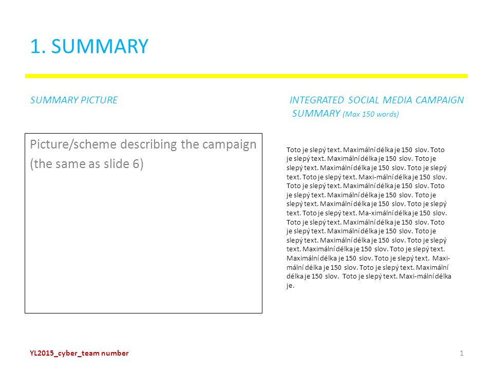 1. SUMMARY Picture/scheme describing the campaign (the same as slide 6) Toto je slepý text.
