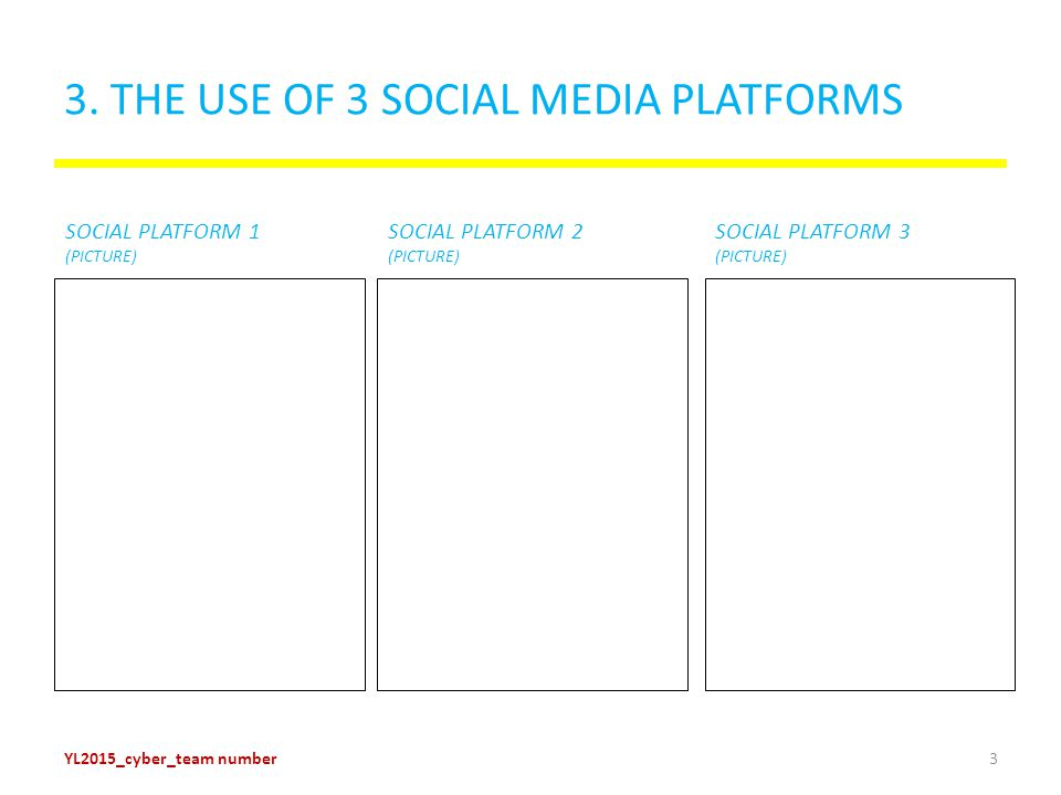 4. THE USE OF 3 SOCIAL MEDIA PLATFORMS Platform 1 - picture YL2015_cyber_team number4