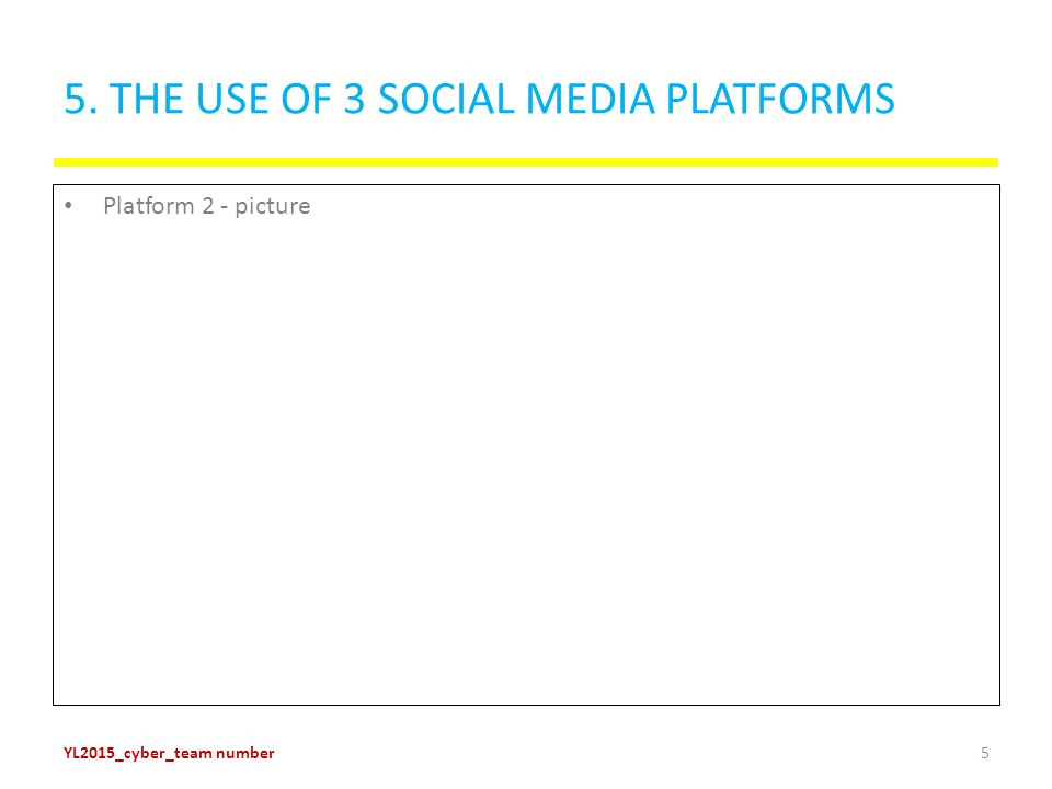 5. THE USE OF 3 SOCIAL MEDIA PLATFORMS Platform 2 - picture YL2015_cyber_team number5