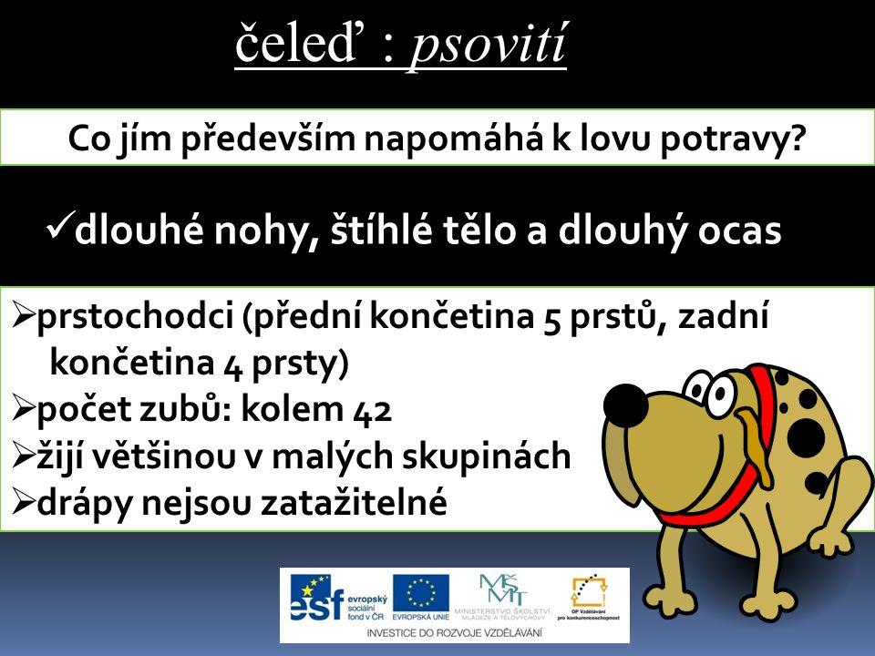 Zdroje Přírodopis 2 pro 7.ročník základní školy a nižší ročníky víceletých gymnázií.