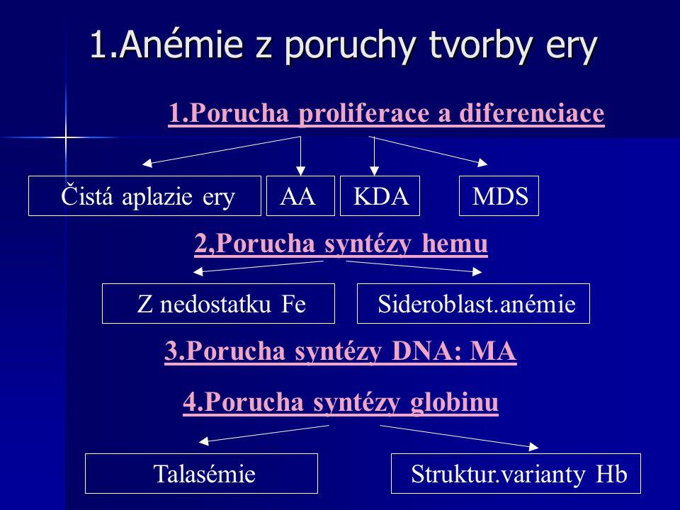 1.Anémie z poruchy tvorby ery 1.Anémie z poruchy tvorby ery 1.Porucha proliferace a diferenciace Čistá aplazie ery AA KDA MDS 2,Porucha syntézy hemu Z