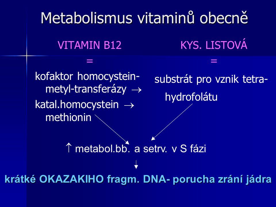Metabolismus vitaminů obecně VITAMIN B12 = kofaktor homocystein- metyl-transferázy  katal.homocystein  methionin KYS. LISTOVÁ = substrát pro vznik t
