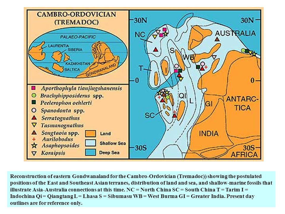 Reconstruction of eastern Gondwanaland for the Cambro-Ordovician (Tremadoc)) showing the postulated positions of the East and Southeast Asian terranes