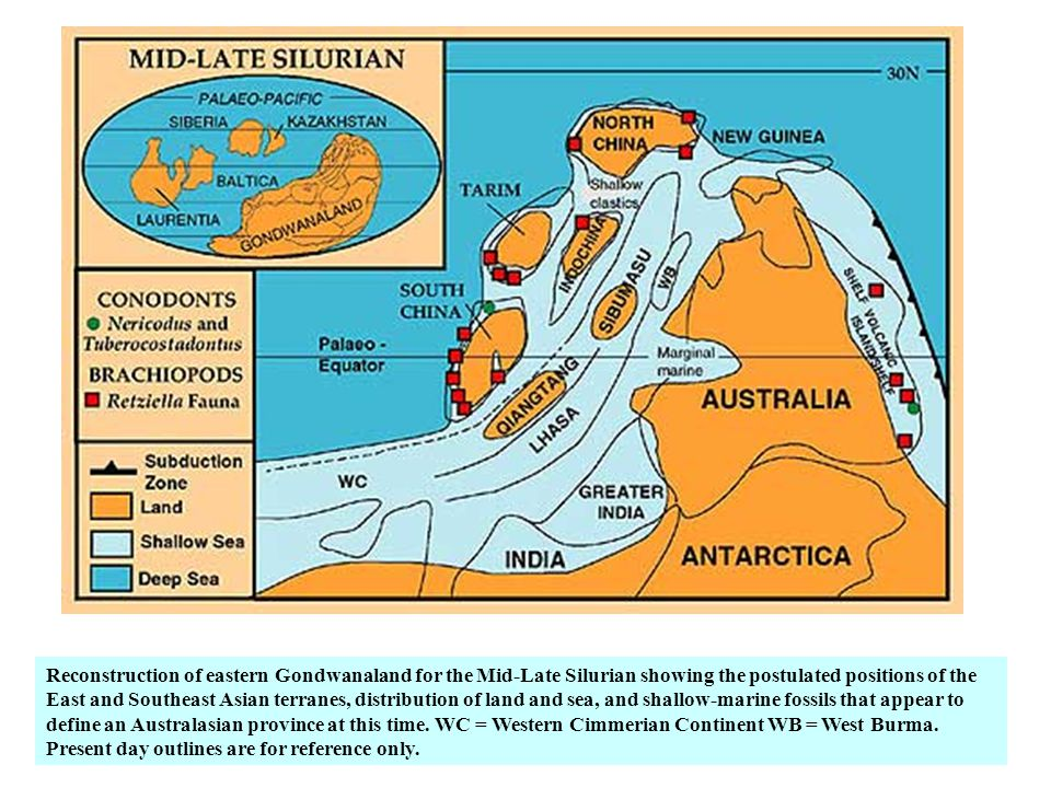 Reconstruction of eastern Gondwanaland for the Mid-Late Silurian showing the postulated positions of the East and Southeast Asian terranes, distribution of land and sea, and shallow-marine fossils that appear to define an Australasian province at this time.