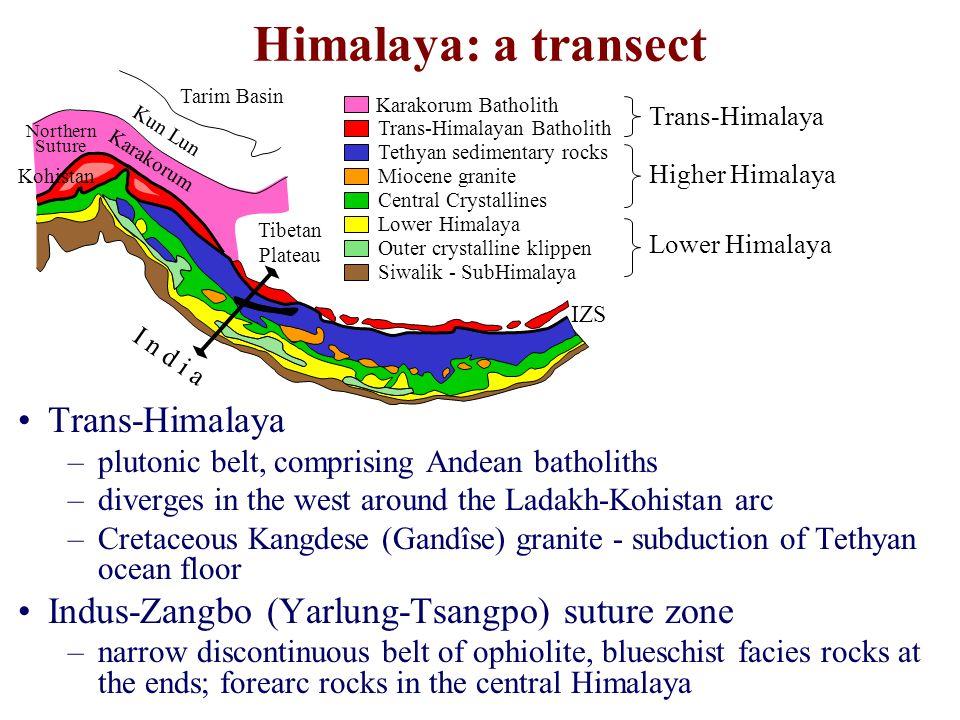 Trans-Himalaya –plutonic belt, comprising Andean batholiths –diverges in the west around the Ladakh-Kohistan arc –Cretaceous Kangdese (Gandîse) granite - subduction of Tethyan ocean floor Indus-Zangbo (Yarlung-Tsangpo) suture zone –narrow discontinuous belt of ophiolite, blueschist facies rocks at the ends; forearc rocks in the central Himalaya Himalaya: a transect Karakorum Batholith Trans-Himalayan Batholith Tethyan sedimentary rocks Miocene granite Central Crystallines Lower Himalaya Outer crystalline klippen Siwalik - SubHimalaya Trans-Himalaya Higher Himalaya Lower Himalaya Tarim Basin Kun Lun Karakorum Kohistan Tibetan Plateau I n d i a IZS Northern Suture