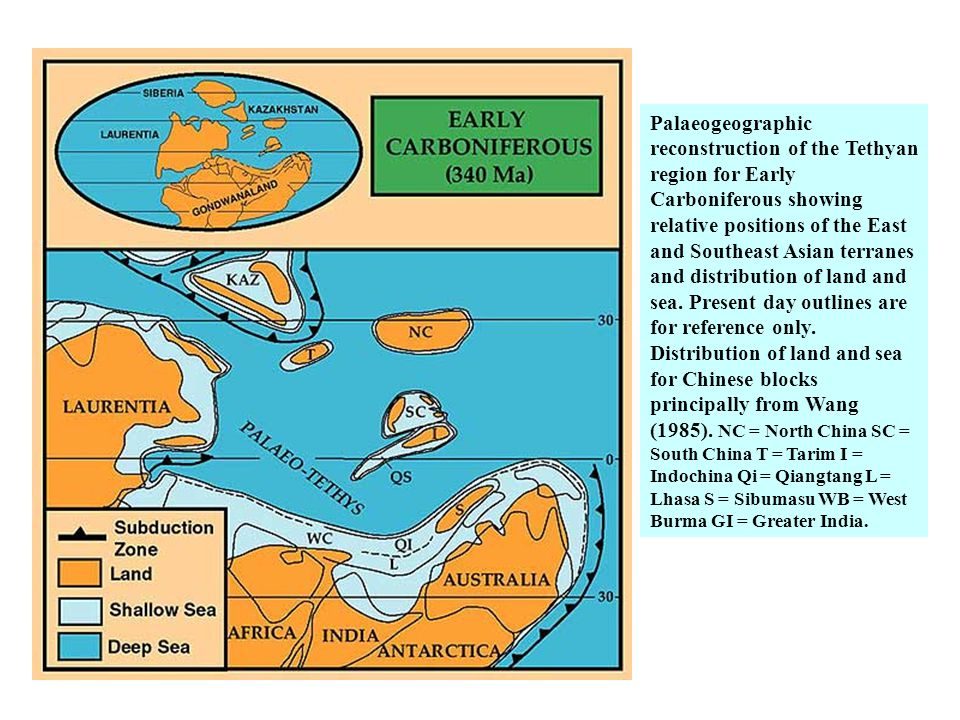 Palaeogeographic reconstruction of the Tethyan region for Early Carboniferous showing relative positions of the East and Southeast Asian terranes and