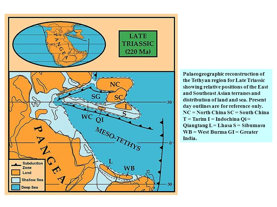 Palaeogeographic reconstruction of the Tethyan region for Late Triassic showing relative positions of the East and Southeast Asian terranes and distribution of land and sea.