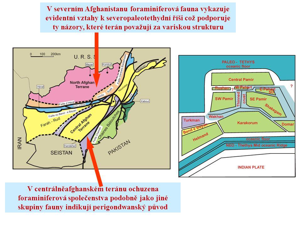 V severním Afghanistanu foraminiferová fauna vykazuje evidentní vztahy k severopaleotethydní říši což podporuje ty názory, které terán považují za var