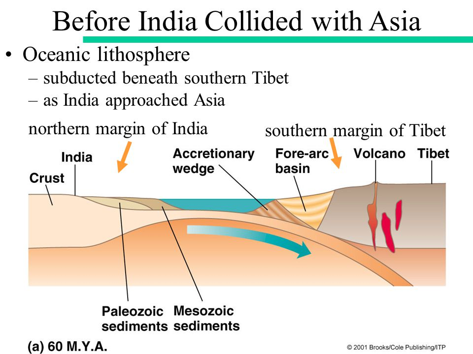 Oceanic lithosphere –subducted beneath southern Tibet –as India approached Asia northern margin of India Before India Collided with Asia southern margin of Tibet