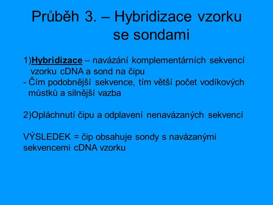 Průběh 3. – Hybridizace vzorku se sondami 1)Hybridizace – navázání komplementárních sekvencí vzorku cDNA a sond na čipu - Čím podobnější sekvence, tím