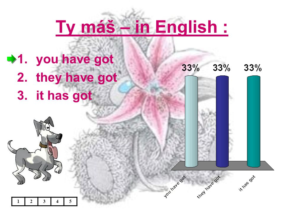 Ty máš – in English : 12345 1.you have got 2.they have got 3.it has got