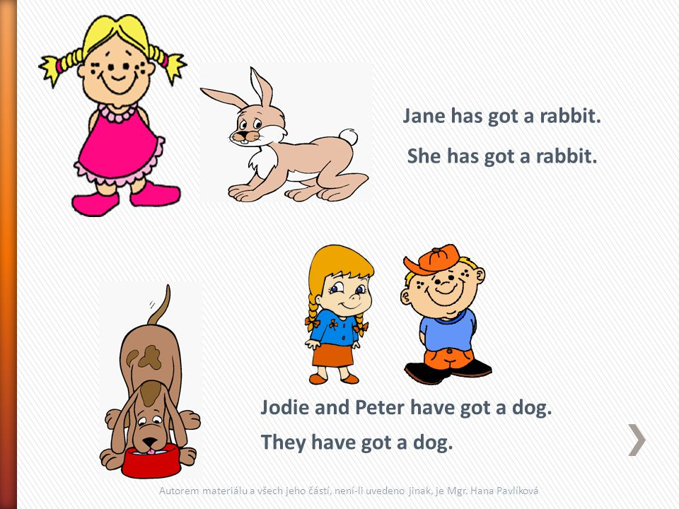 Jane has got a rabbit.Jodie and Peter have got a dog.