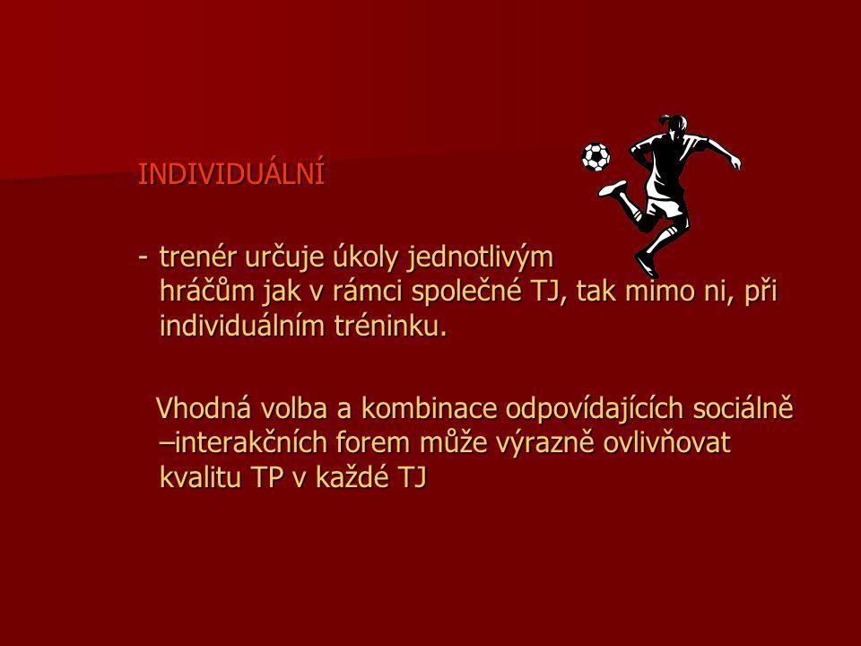 INDIVIDUÁLNÍ -trenér určuje úkoly jednotlivým hráčům jak v rámci společné TJ, tak mimo ni, při individuálním tréninku.