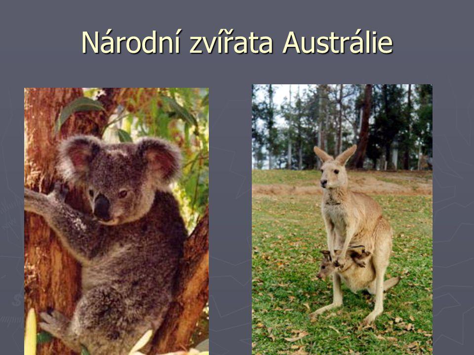 Národní zvířata Austrálie