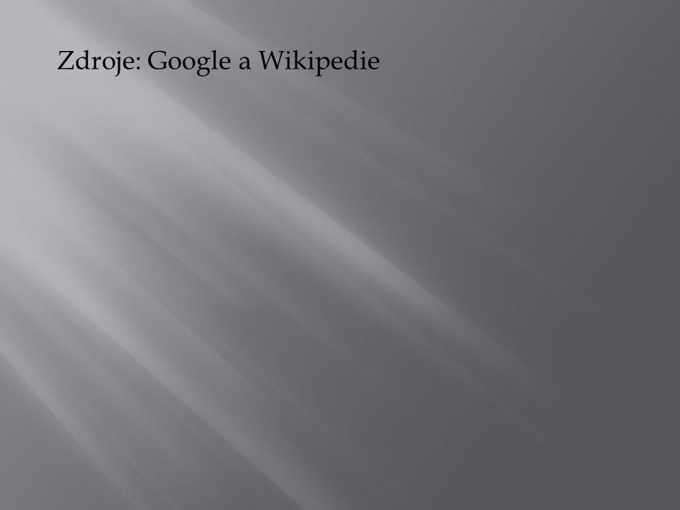 Zdroje: Google a Wikipedie