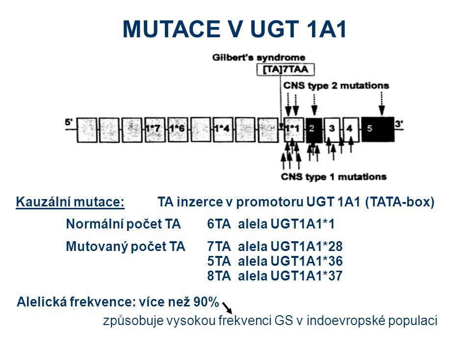 MUTACE V UGT 1A1 Alelická frekvence: více než 90% způsobuje vysokou frekvenci GS v indoevropské populaci Kauzální mutace:TA inzerce v promotoru UGT 1A1 (TATA-box) Normální počet TA6TA alela UGT1A1*1 Mutovaný počet TA7TA alela UGT1A1*28 5TA alela UGT1A1*36 8TA alela UGT1A1*37