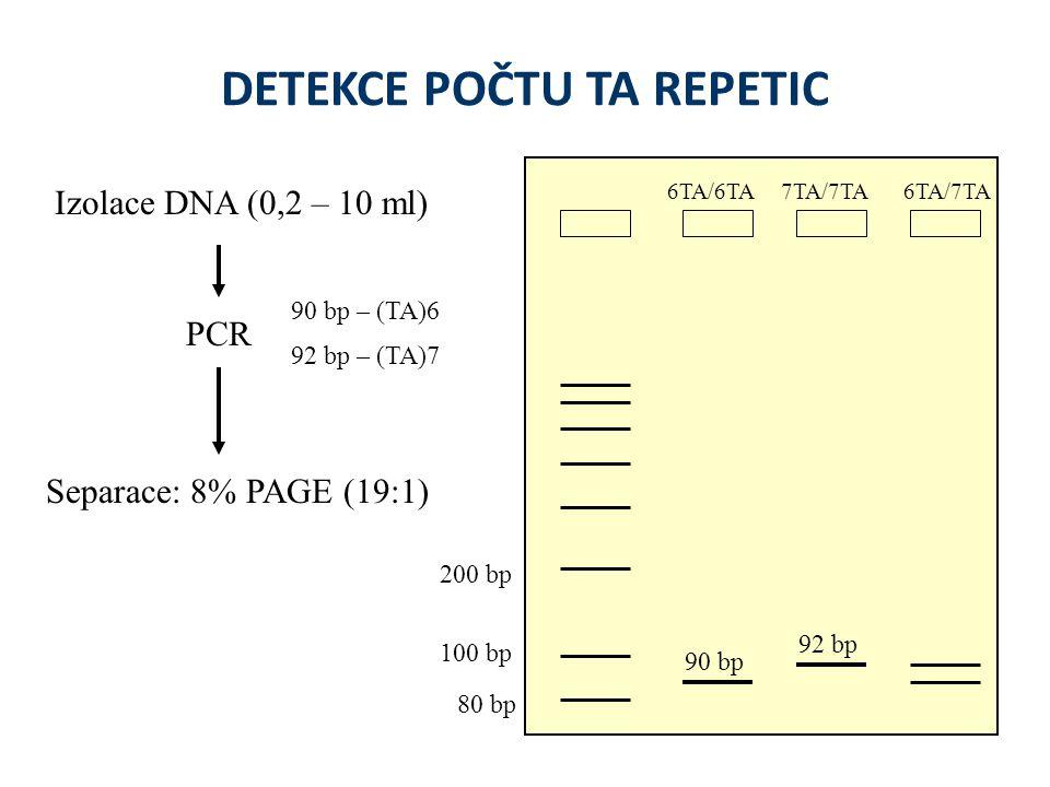 DETEKCE POČTU TA REPETIC Izolace DNA (0,2 – 10 ml) PCR Separace: 8% PAGE (19:1) 90 bp – (TA)6 92 bp – (TA)7 92 bp 90 bp 200 bp 100 bp 80 bp 6TA/6TA6TA/7TA7TA/7TA