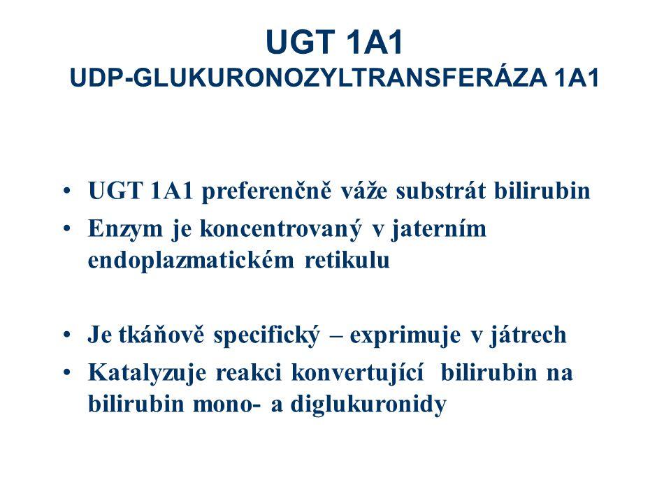 UGT 1A1 UDP-GLUKURONOZYLTRANSFERÁZA 1A1 UGT 1A1 preferenčně váže substrát bilirubin Enzym je koncentrovaný v jaterním endoplazmatickém retikulu Je tkáňově specifický – exprimuje v játrech Katalyzuje reakci konvertující bilirubin na bilirubin mono- a diglukuronidy