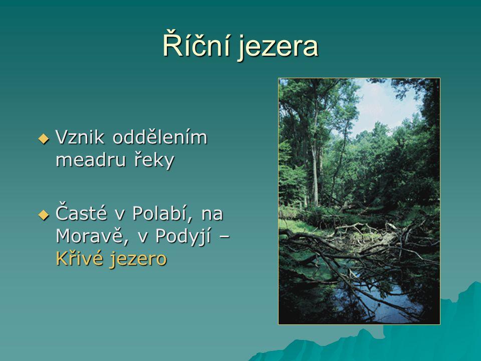 Říční jezera  Vznik oddělením meadru řeky  Časté v Polabí, na Moravě, v Podyjí – Křivé jezero