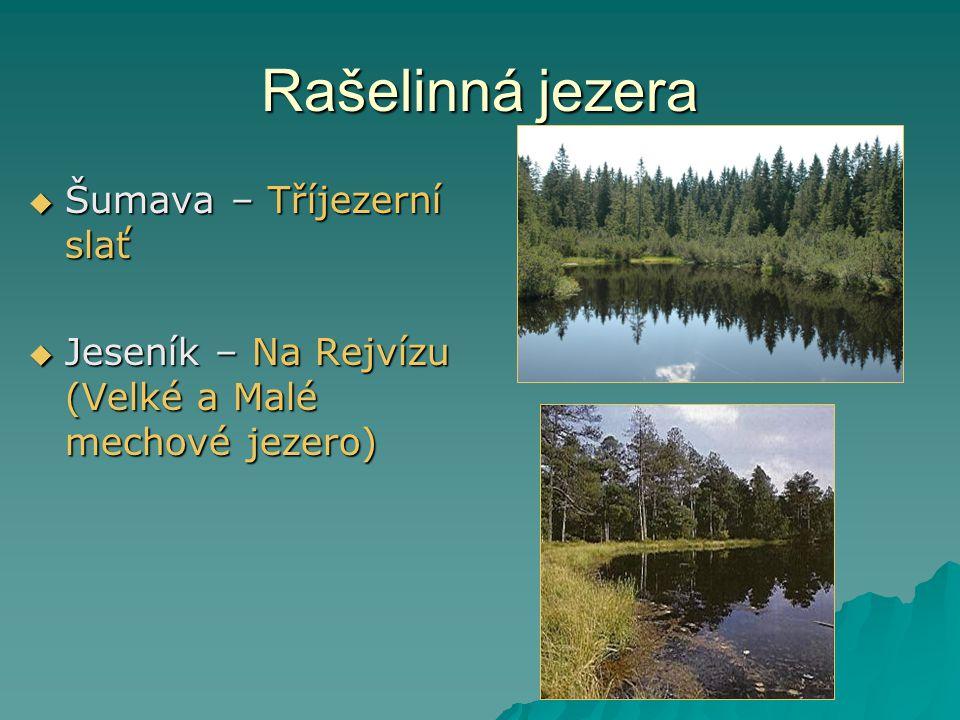 Rašelinná jezera  Šumava – Tříjezerní slať  Jeseník – Na Rejvízu (Velké a Malé mechové jezero)