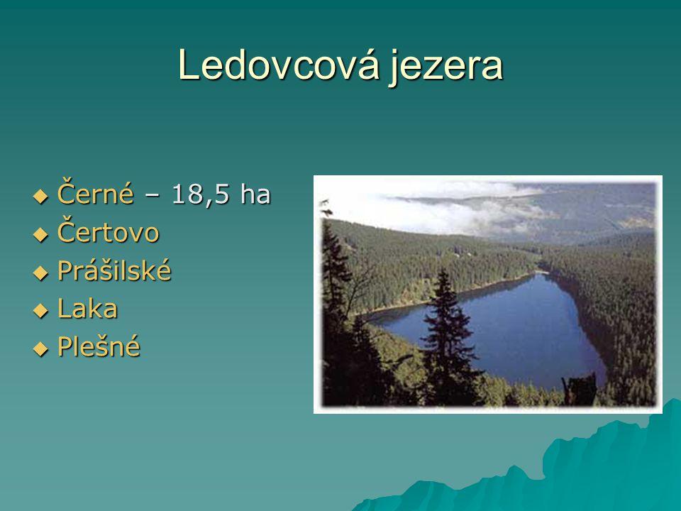 Ledovcová jezera  Černé – 18,5 ha  Čertovo  Prášilské  Laka  Plešné