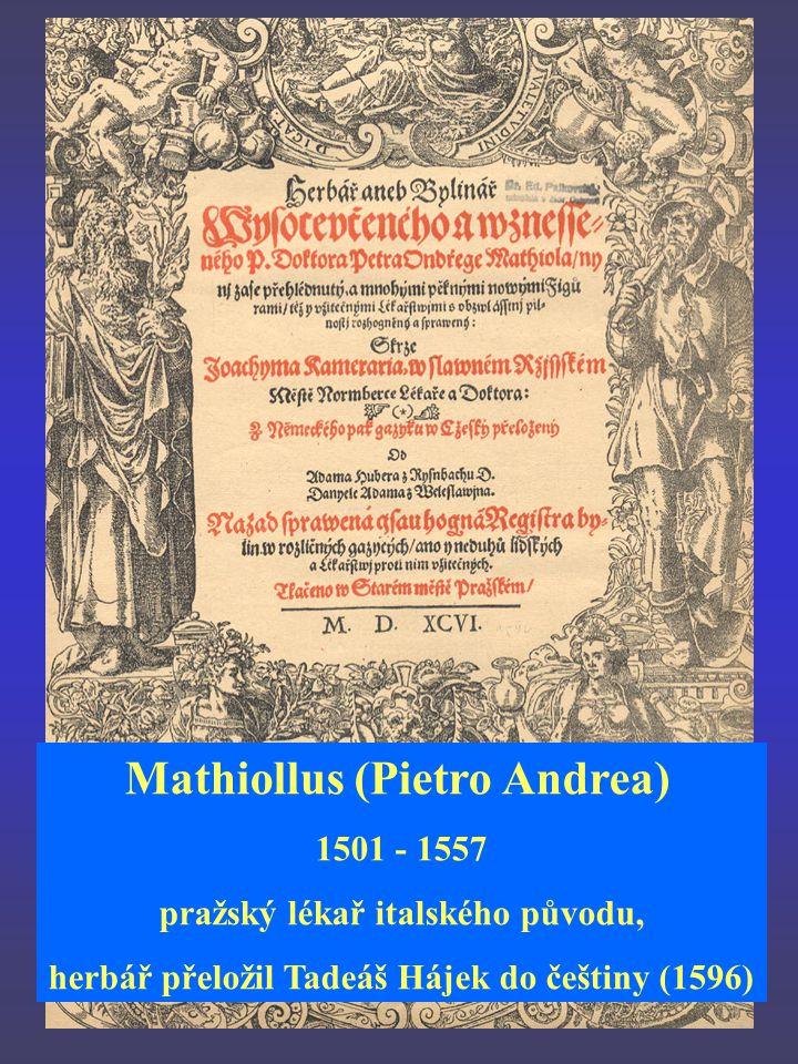 Mathiollus (Pietro Andrea) 1501 - 1557 pražský lékař italského původu, herbář přeložil Tadeáš Hájek do češtiny (1596)