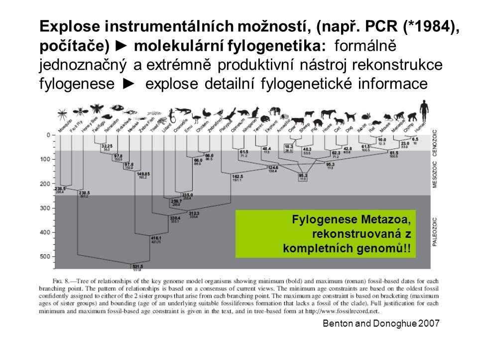 Benton and Donoghue 2007 Explose instrumentálních možností, (např.