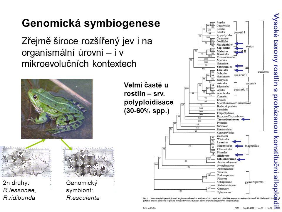 Genomická symbiogenese Zřejmě široce rozšířený jev i na organismální úrovni – i v mikroevolučních kontextech 2n druhy: R.lessonae, R.ridibunda Genomický symbiont: R.esculenta Velmi časté u rostlin – srv.