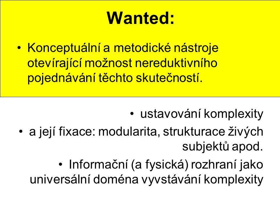 Wanted: Konceptuální a metodické nástroje otevírající možnost nereduktivního pojednávání těchto skutečností.