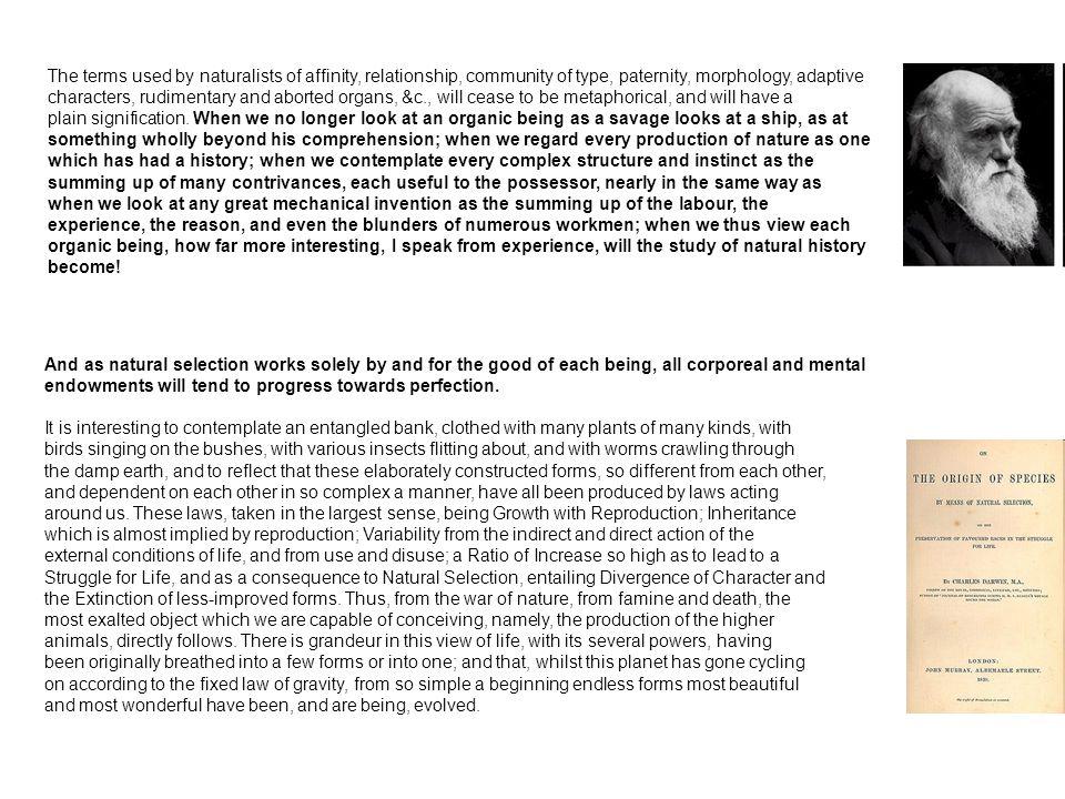 Základní požadavek: respektování odlišností a specifik jednotlivých modelů a konceptuálních/metodických rámců – ohled na (kontextuální) jedinečnost vývojové události Má smysl (a lze?) za těchto okolností hledat společné rysy, obecniny typu zákonů klasických (moderních) věd?