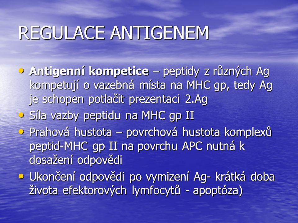 REGULACE ANTIGENEM Antigenní kompetice – peptidy z různých Ag kompetují o vazebná místa na MHC gp, tedy Ag je schopen potlačit prezentaci 2.Ag Antigen