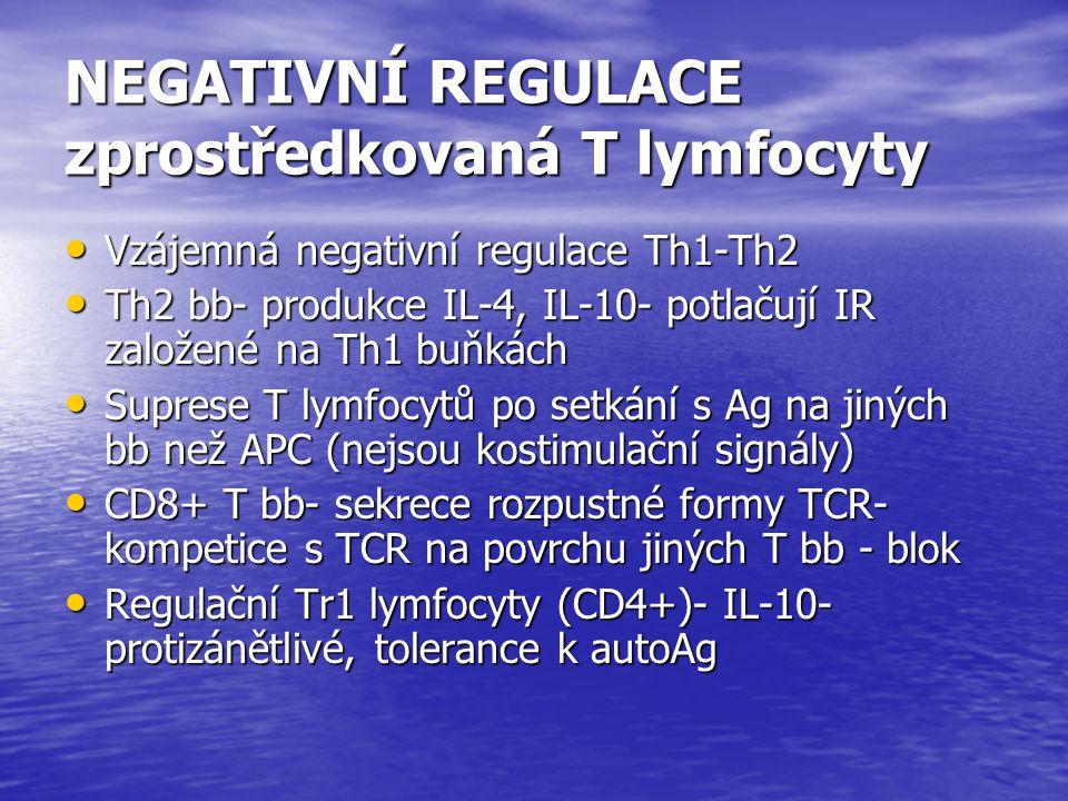 NEGATIVNÍ REGULACE zprostředkovaná T lymfocyty Vzájemná negativní regulace Th1-Th2 Vzájemná negativní regulace Th1-Th2 Th2 bb- produkce IL-4, IL-10- p