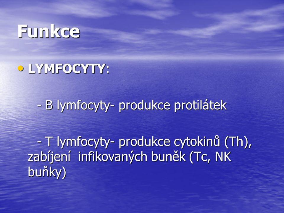 Funkce LYMFOCYTY: LYMFOCYTY: - B lymfocyty- produkce protilátek - B lymfocyty- produkce protilátek - T lymfocyty- produkce cytokinů (Th), zabíjení inf
