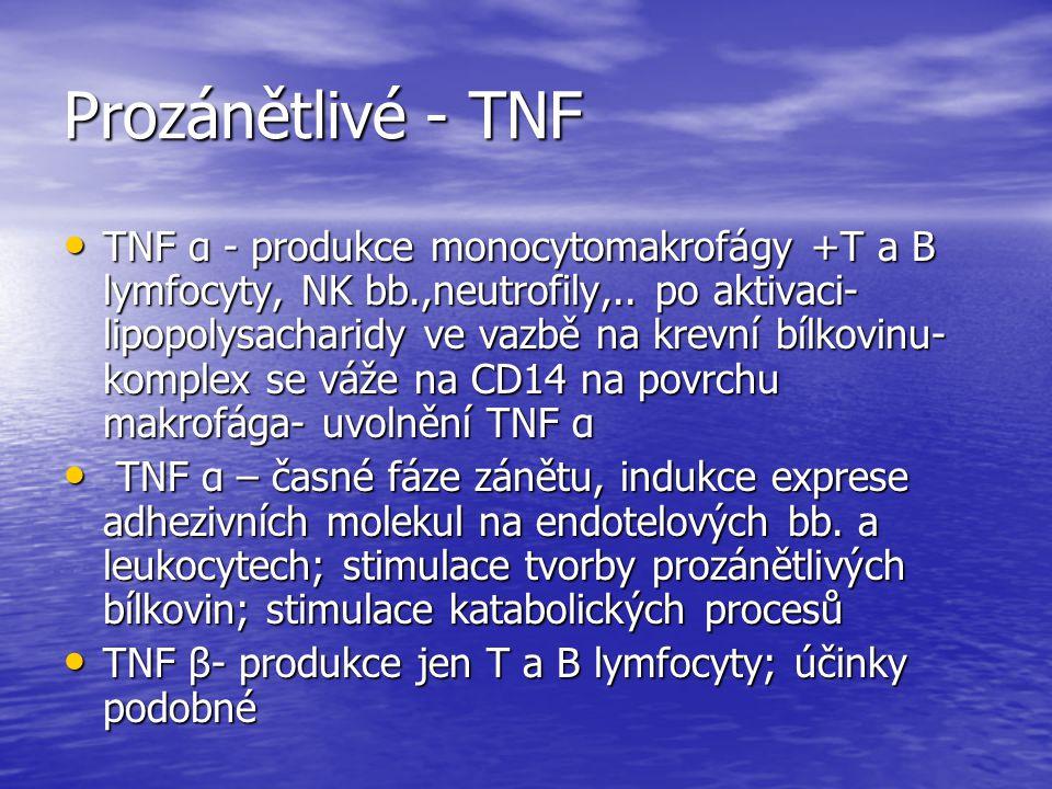Prozánětlivé - TNF TNF α - produkce monocytomakrofágy +T a B lymfocyty, NK bb.,neutrofily,.. po aktivaci- lipopolysacharidy ve vazbě na krevní bílkovi